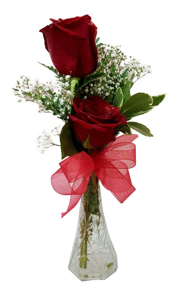 2 Roses In A Vase Iris Florist